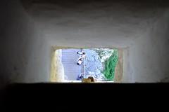 Castell de Predjama (7) / Karst / Eslovenia / Slovenia (Ull mgic) Tags: predjama karst eslovenia slovenia castell castillo castle edifici arquitectura fuji xt1