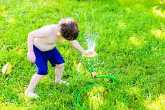 -  (lermaniac) Tags: sprinkler water wet backyard summer