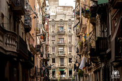 Carrer de Monjo (andrea.prave) Tags: barcellona catalogna spagna espana cataluña catalonha reinodeespaña españa hispania spain catalunya spanien espagne palace old quartiere carrerdemonjo labarceloneta district barrio quartier nachbarschaft 近所 соседство حي 附近 decorations decori decoraciones décorations dekorationen 装飾 украшения الأوسمة 饰 architettura architecture