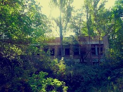 szkoa (h_9000) Tags: pripyat chernobyl czernobyl ukraine ukraina atomic disaster katastrofa jdrowa nuclear eletrownia atomowa power prypiat esi tower cooling plant ukrainki 16th floor urban september flats 2016 decay bloki abandoned buildings trees chemicals hal9000 reaktor rubble 1986 reactor hal9ooo blocks anniversary 30th glass drzewa hawkeye dirt soviet union sowieci lenin wladimir wodzimierz vladimir zsrr ussr