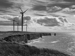 North Cape Wind Farm, P.E.I., Canada (snapify) Tags: canada northamerica northcape princeedwardisland blackandwhite clouds coast coastal daylight energy landscape wind windturbine