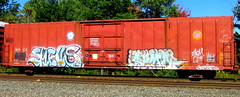 smells - sumo (timetomakethepasta) Tags: smells 907 sumo freight train graffiti art gold medal mwcx feer pedro boxcar nyc