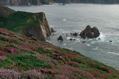 Asturian coast (happy.apple) Tags: comarcavaqueira principadodeasturias spain es