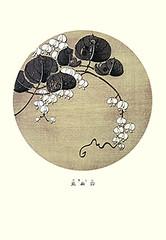 Hyacinth bean (Japanese Flower and Bird Art) Tags: flower hyacinth bean dolichos lablab fabaceae jakuchu ito ukiyo woodblock picture book japan japanese art readercollection