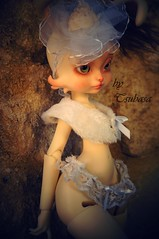 Daphn Sunshine 05 (Tsubasa Make up doll) Tags: lillycat loonette