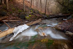 Searching for winter (Thankful!) Tags: longexposure winter ice creek stream brook silvercreek unseasonablywarm haltonhills imissrealwinter winterwithoutsnowisblah