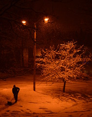 What a cold Canadian night it was. (HansWobbe) Tags: winter night frhwo frhwofavs