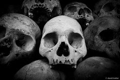 One in a Million (davidkoiter) Tags: bw white david black field canon eos skull cambodia killing human 7d april l series phnompenh bone desaturated f4 1740 remain 2012 khmerrouge polpot choeungek f4l koiter davidkoiter