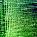 MS-DOS Green 1