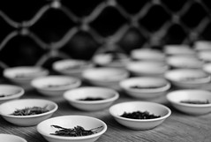 Teatime (TablinumCarlson) Tags: leica bw white black paris france 50mm dof tea explore summicron m8 teatime tee explored fluidr