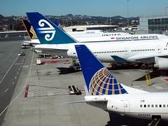 SFO Intl Terminal (kenjet) Tags: sanfrancisco california globe sfo united boeing airlines sq airnewzealand tails ua anz sanfranciscointernationalairport ksfo 737824 zksuh 747475 n33209