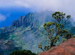 Na Pali (JaZ99wro) Tags: ocean blue red usa green film clouds analog hawaii kauai mamiya645 kodakektachromee100g e100g wondersofnature epsonv750 tetenal3bathkit f0187
