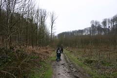 Waterloo150320 (31) (Patrick Williot) Tags: yards waterloo jogging challenge brabant wallon 13000 parcours sporidarite
