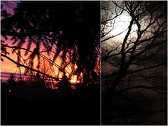 185 | The night will bring me out real soon / Howling at the big full moon / But isn't that what people do? (marmeladenboot) Tags: light moon night dark lost mond nacht dream nightscene ontheroad dunkel stimmung verloren theriver traum kristoferastrm melancholie nachtszene marmeladenboot