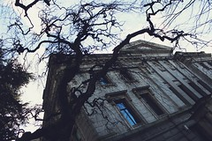BC (Mait Rezende) Tags: tree vancouver movie scary antique horror museam vamcouver