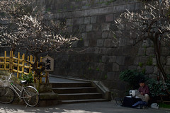 Chiromancer of the Onna-zaka Slope (KMrT(1800mlph)) Tags: plant sign person alley shrine