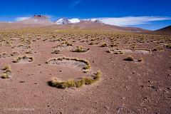 20070630_360 (Zalacain) Tags: southamerica bolivia barren altiplano