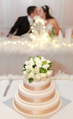 Wedded Bliss (dinsy2) Tags: wedding bokeh weddingcake husbandandwife reception weddingkiss