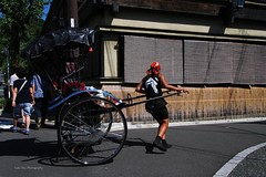 Pull carts, Kyoto, Japan (Luke,Ma) Tags: old city panorama building fashion japan architecture digital landscape ed temple pull four golden ancient kyoto view traditional olympus m architect micro   ez pavilion prefecture kansai  carts kinkakuji 43 omd thirds kinkaku    m43    greatphotographers mzd f4056 em5 kyotofu kyotoshi flickraward  918mm mzuiko m918 flickrtravelaward  ezm918