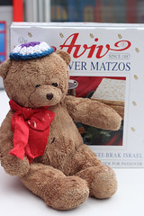 mar25_0002 (*superhoop*) Tags: toodles passover pesach matza seder