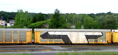 (timetomakethepasta) Tags: steel t freight train graffiti wholecar new york selkirk msk