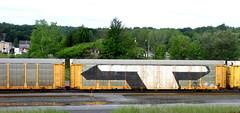 (timetomakethepasta) Tags: steel t freight train graffiti wholecar new york selkirk msk