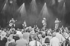 Hayseed Dixie ja yleisöä