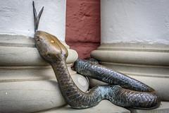 The Snake (dietmar-schwanitz) Tags: rostock mecklenburgvorpommern deutschland germany rathaus townhall schlange snake sculpture skulptur bronze nikond750 nikonafsnikkor24120mmf40ged lightroom dietmarschwanitz