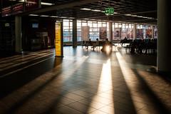 _DOO8640 (**) Tags:  dresden airport   delesideng travel    euro