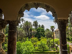 Spain May-June 2016-1201.jpg (bruce.lande) Tags: barcelona cathedral cava church cordoba flamenco friends granda history madrid mosque seville sitges spain vacation vowrenewal wine