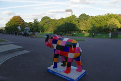 22.9.16 Elephants in Sheffield 120 (donald judge) Tags: sheffield herd of elephants chldrens hospital charity