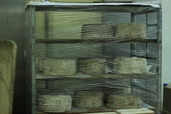 Rungis - Marche des fromages (marie-adeline.rothenburger) Tags: rungis march fromages affinage