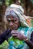 Sri Lanka (T E E J O O F O O T O O) Tags: srilanka teapickers theeplukster
