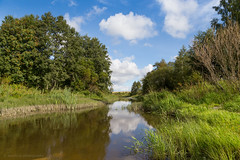 Little Creek (samiKoo) Tags: sunlight clouds sky blue green reflection reflections water river creek trees nature naturallight naturephotography landscape canon 6d 24105mml photography photo photograph
