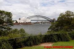 Sydney - Royal Botanic Gardens -  Harbour Bridge (soyouz) Tags: aus australie gardenisland geo:lat=3386069400 geo:lon=15122146900 geotagged moorepark newsouthwales sydney parc pont harbourbridge australiel
