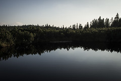 Pohorje (PicsbyGrega) Tags: pohorje slovenia slovenija jezera canoneos60d sigma1750mmf28exdcos lovrenškajezera lake forest gozd rogla štajerska hiking krajimojihprednikov