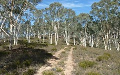 979 Taylors Flat Road, Boorowa NSW