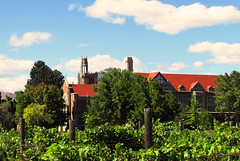 Abbey (Lydia_Brave) Tags: abbey grapes vinyard wine church monestary green contrast roof building colorado canyoncity canyon fall city nature surroundings