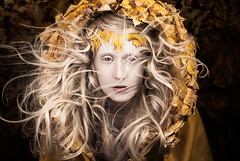 Wonderland 'Let Your Heart Be The Map' (Kirsty Mitchell) Tags: autumn sunlight leaves yellow fairytale awakening wind katie magic spell breeze wonderland storybook magical enchanted thejourneyhome kirstymitchell elbievaneeden letyourheartbethemap