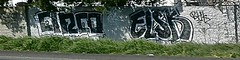Cinco  Elsk (SHAMMWOW!) Tags: graffiti freeway booze cinco 209 elsk hounds krew nife bhk klick sereo