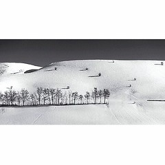 Winter hills (Andy Ostafi) Tags: square squareformat iphoneography instagramapp uploaded:by=instagram