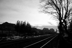 Eastbound Approaching (Cameron A. Photography) Tags: toronto ontario train north rail container cp summerhill intermodal es44