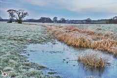 Mendham 3 (Ben Wink Photography) Tags: cold ice landscape suffolk nikon frost flood east hdr anglia mendham d90 3580mm