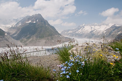Aletsch Glacier (boscoppa) Tags: switzerland nikon glacier aletsch d300s