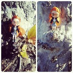 Tree Climbing Adventure