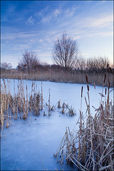 Frozen Morning (Lee Beel) Tags: park uk morning winter england ice canon landscape dawn frozen frost united kingdom lincolnshire photograph lee edge waters filters manfrotto beel northlincolnshire