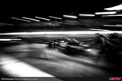 APR-Motorsport-Rolex-24-2013-131