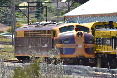4204 at Lithgow