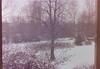 dutch winter (89) (bertknot) Tags: winter dutchwinter dewinter winterinholland winterinthenetherlands hollandsewinter winterinnederlanddutchwinter
