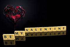 Valentine (Siobhan Bickerdike - gone to Ipernity) Tags: love valentine bdc beginnersdailychallengewinner
